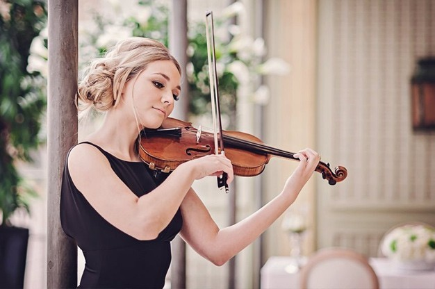 Click here to view Violinist, Sally Potterton's Profile