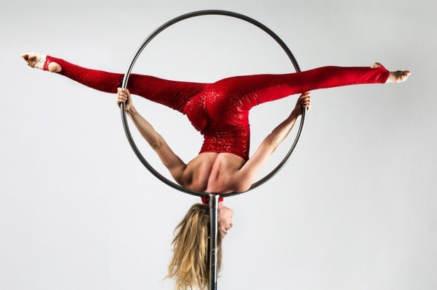 Click here to view Aerialist and Acrobat, Grace Ramsey's Profile