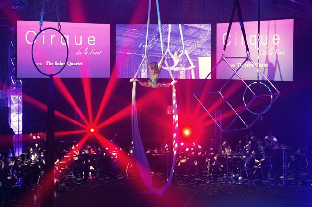 aerialist live performers
