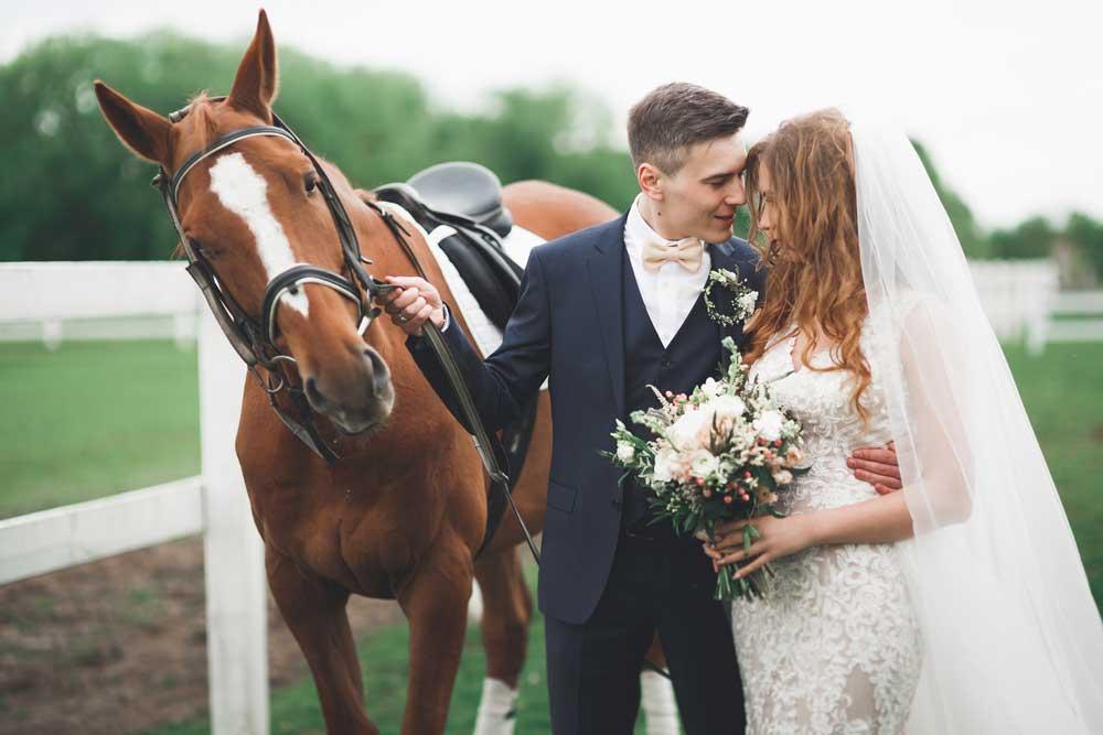 Romantic Fairytalem Happy Horse