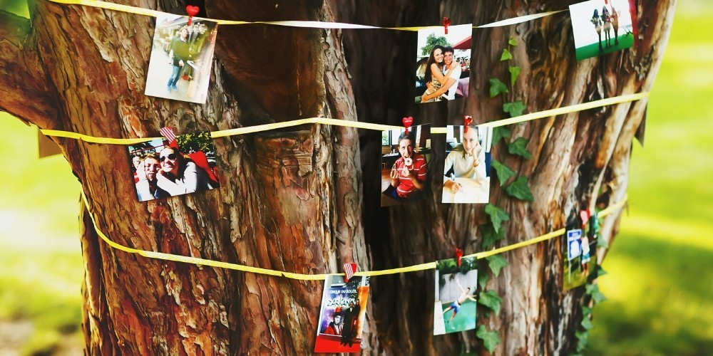 polaroid guestbook wedding ideas