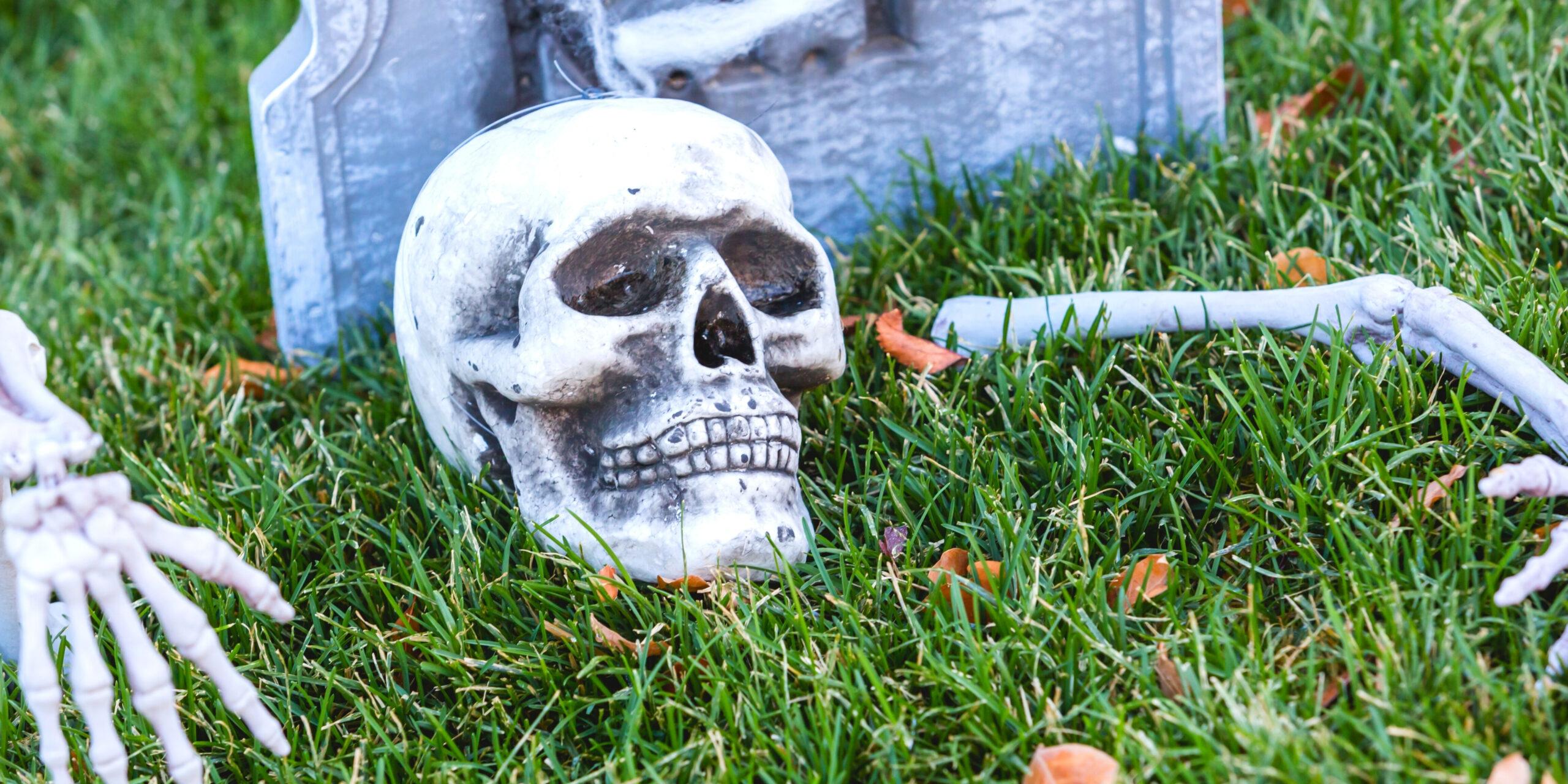 garden, graveyard, halloween, decorations