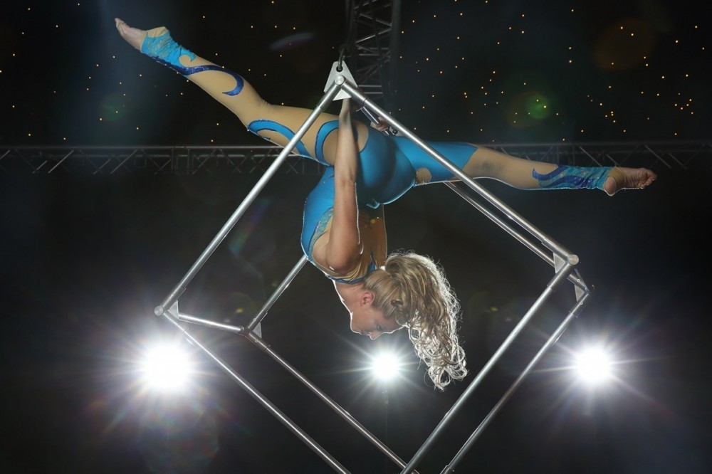 Aerialist Entertainer