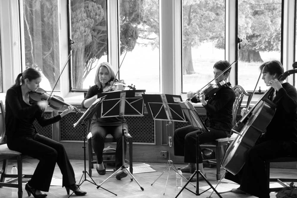 musicians in a string quartet