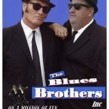 Male Singer Needed - Blues Brothers Tribute Show Summer Season 2017 Mallorca image