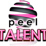 Entertainment Host Auditions image