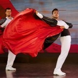 Male Dancers Wanted - Top International Entertainment Team - Approx.825€ Per Month image
