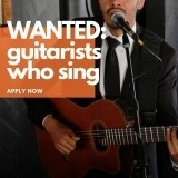 Showband Guitarist Required - International Cruise Line image