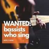 Showband Bassist Required - International Cruise Line image