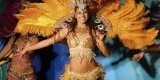 Female Samba Dancers Required - Hotel Contract 1st September 2018 Bahrain image