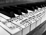 Female Lobby Pianist Required - 5* Hotel 15th June 2018 Bahrain image