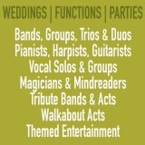Function & Party Bands, Duo's, Solos Musicians and Other Entertainers Wanted For Various Events In The UK image