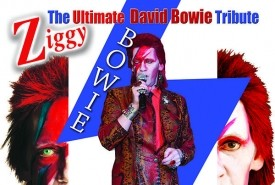 Stuart Roach: David Bowie - Neil Diamond - Frank Sinatra - Multi Tribute Artist - Neil Diamond Tribute Act Bolton, North West England