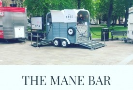 The Mane Bar - Mobile Bar
