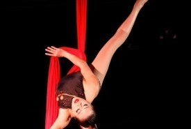 Vivian Tam - Aerialist / Acrobat Seattle, Washington