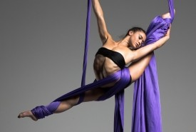 Elegant and dynamic Silks performance - Aerialist / Acrobat Miami, Florida