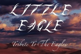 Little Eagle  ( Eagles Songbook ) - Eagles Tribute Band Birmingham, West Midlands