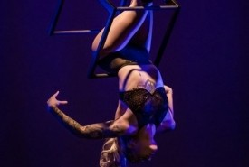 Ellie May Marshall - Aerialist / Acrobat New Zealand, Auckland
