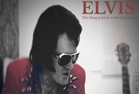 Andy Stevens Elvis the king is back in the building - Elvis Impersonator Barnsley, Yorkshire and the Humber