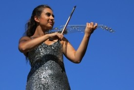 Spotlight Violin - Violinist Hillingdon, London