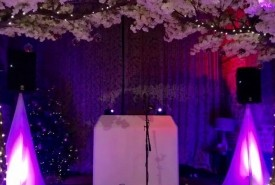 DJ Lee Gibling - Wedding DJ Norwich, East of England