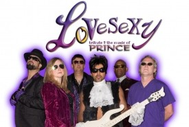 LoVeSeXy tribute 2 the music of PRINCE - Wedding Band Boston, Massachusetts