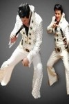 THE ULTIMATE ELVIS EXPERIENCE