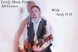 Andy O' Dea  - Guitar Singer Leinster
