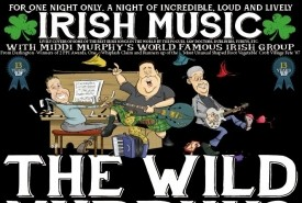 The Wild Murphys - Irish Band