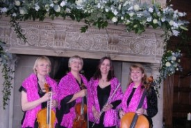 Pink Champagne String Quartet - String Quartet South West