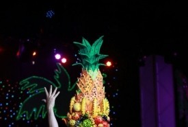 Carmen Miranda  - Other Artistic Entertainer Pretoria, Gauteng