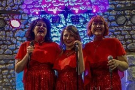 The Candies - Female Singer