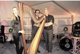 Harpist solo , with Band, With DJ, Augmented Reality  - Cover Band