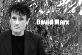 David Marx - Multi-Instrumentalist Swindon, South West