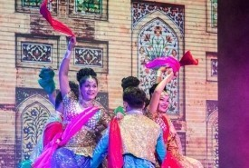 colours of India  - Bollywood Dancer India