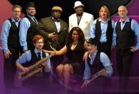 A DECADE Of SOUL - Classic Soul & Motown Revue & Tribute - 60s Tribute Band New York City, New York