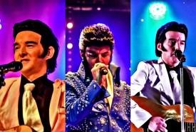 Chris Vegas - Elvis Impersonator Romford, London