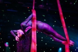 Sonya Sonnenberg - Aerialist / Acrobat Las Vegas, Nevada