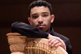 Julian Cardenas - Harpist Netherlands, Netherlands