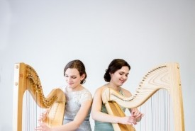 2 of Harps  - Multi-Instrumentalist Sandgate, South East