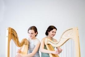 2 of Harps  - Multi-Instrumentalist Sandgate, South East