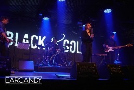 Black & Gold - Wedding Band