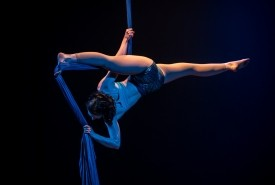Molly Whitehouse - Aerialist / Acrobat