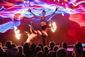 Davinci Show - LED Entertainment Montpellier, France