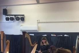 Bethan Lloyd-Thomas - Harpist Caerphilly, Wales