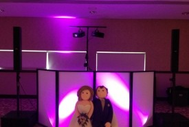 Music Madness Wedding & Event DJ - Wedding DJ