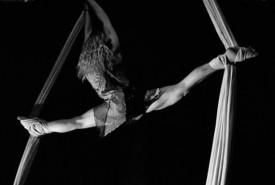 Daly Andrus - Aerialist / Acrobat