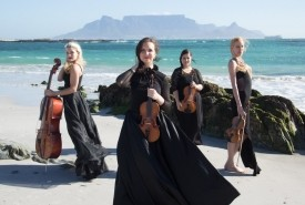 The Hello String Quartet - String Quartet South Africa, Western Cape
