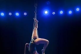Antonietta Alfano - Aerial Rope Act Rochester, New York