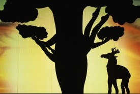 Shadow Theatre  - Hand Shadow Act Kyiv, Ukraine